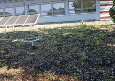 Gründachbewässerung